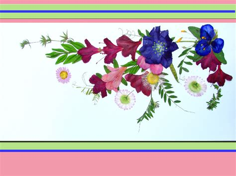 how to make pressed flower cards prinked ink pressed flowers