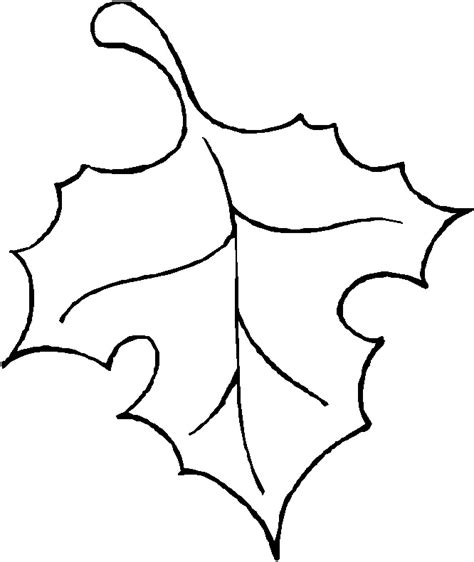 Outline Of A Leaflet by Leaf Outline Printable Az Coloring Pages