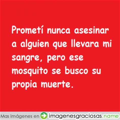 imagenes y frases chistosas para whatsapp frases para whatsapp graciosos imagenes chistosas