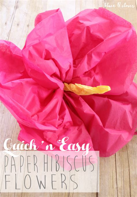 How To Make Flowers Out Of Wrapping Paper - bluet clover and easy paper hibiscus flowers