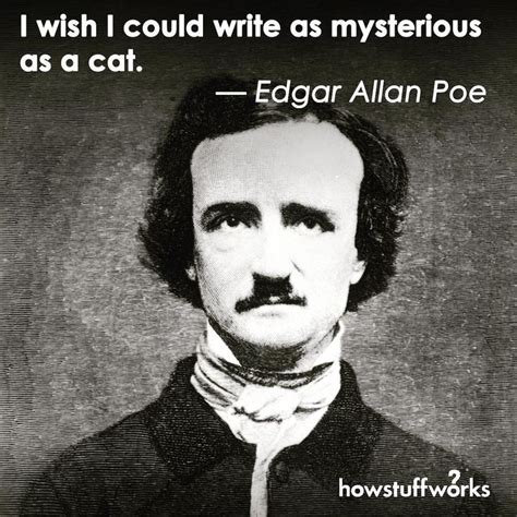 edgar allan poe biography yahoo 123 best images about quote stuff on pinterest elsa