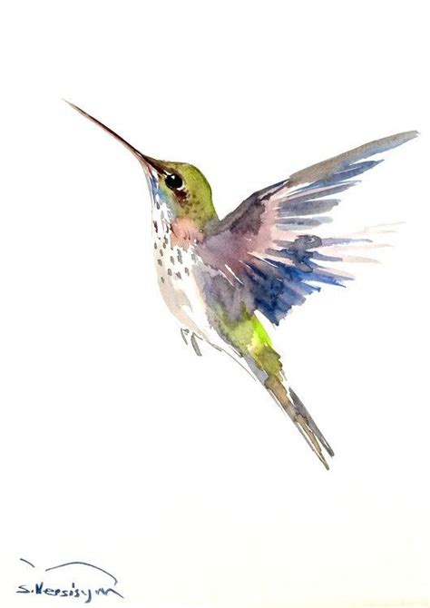1000 ideas about watercolor bird 1000 ideas about watercolor bird on