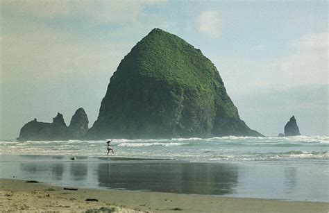 panoramio photo of haystack rock