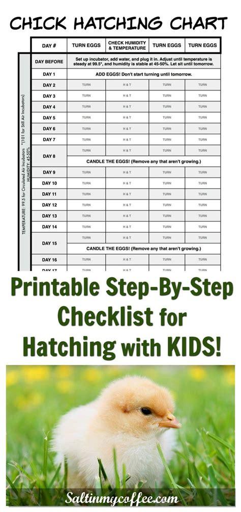 Backyard Chickens Chart 1231 Best Images About My Chicken Children Ducks And