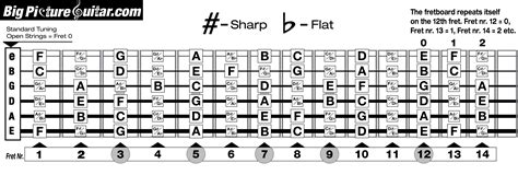 guitar fretboard diagram notes on fretboard big picture guitar
