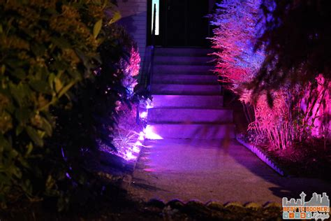 Purple Outdoor Lights Update Your Landscaping In Five Minutes By Adding Light