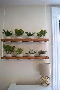 best 25 wall planters ideas on framed