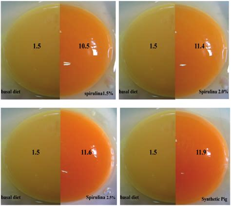 egg yolk color figure 1 comparison of egg yolk colour of