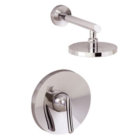stainless steel sink restoration kit shop american standard steel stainless tub shower repair