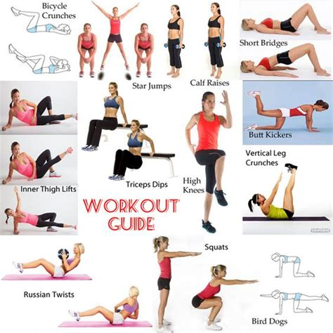 exercise workout guide and workout on