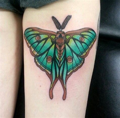 luna moth tattoo best 25 moth ideas on moth