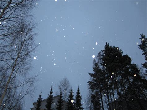 The Falling Sky snowing s