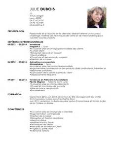 exemple cv en vendeur sle resume