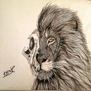 lion skull tattoo how to draw a skull search projects