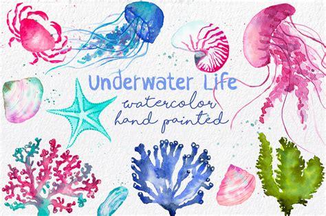 life pattern en español acuarelas fondo marino clip art ilustraciones
