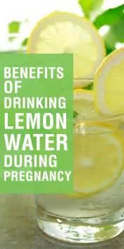 Is Detox Water For Pregnancy by Best 25 Lemon Water Ideas On Lemon