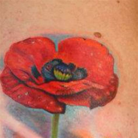 pinterest tattoo poppy remembrance poppy tattoo tatts pinterest poppies
