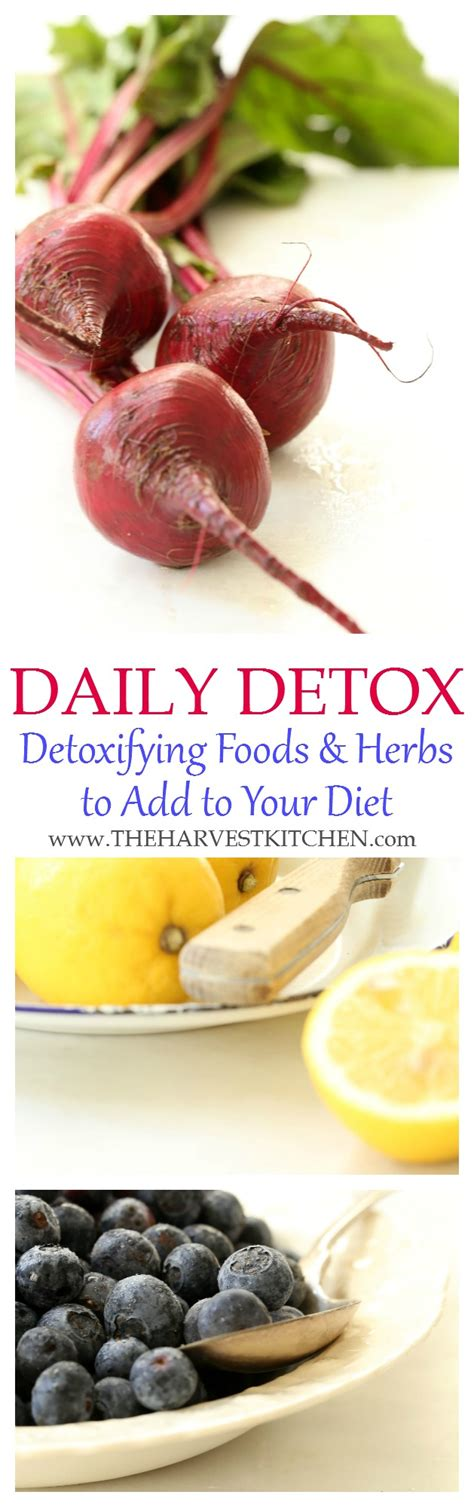 Is It Safe To Detox Everyday by Daily Detox Diet The Harvest Kitchen