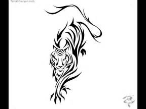 tiger tattoo outline designs celtic tiger designs zodiac tiger