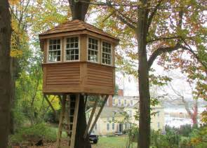 house images gallery tree house photos gallery ct tree house brothers