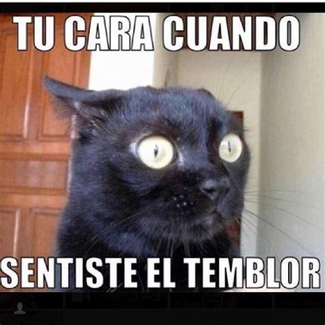 imagenes memes temblor a prop 243 sito de temblores memes pinterest