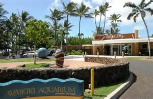 Thanksgiving In Hawaii Waikiki Aquarium Honolulu Visit All Over The World