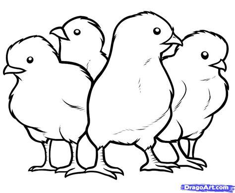 Chick Coloring Page   Bebo Pandco