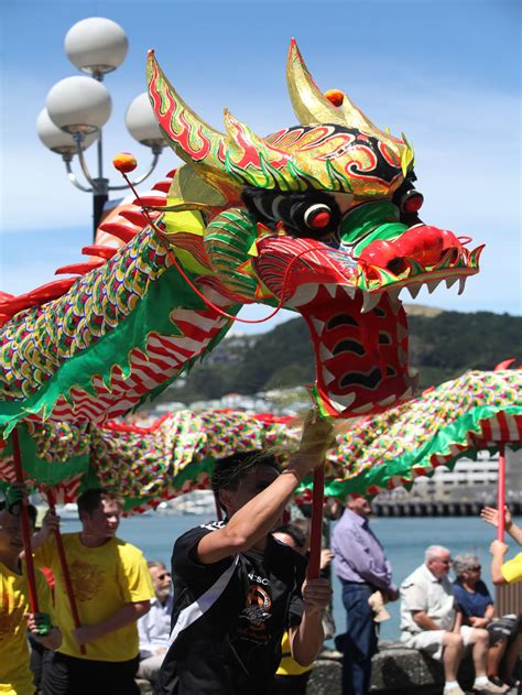 new year parade wellington nzcfs wellington branch february 2016 newsletter new