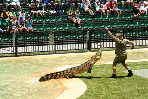 Steve Irwin Memorial Day At The Australia Zoo by ファイル Steve Irwin At Australia Zoo Jpg