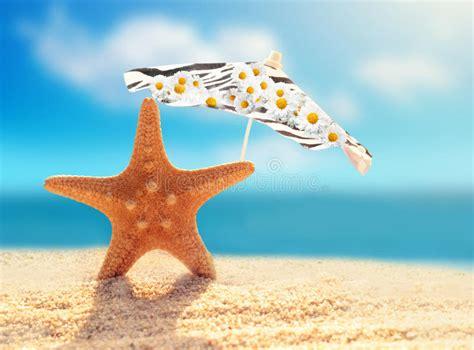download wallpaper bintang laut summer beach starfish and umbrella on a beach sand stock