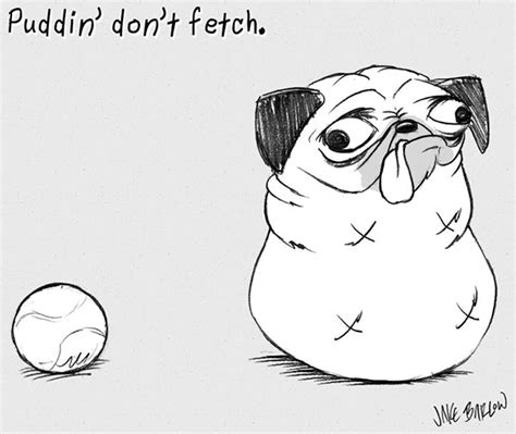 puddin the pug puddin don t on behance
