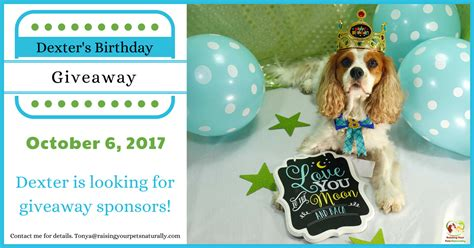 Free Birthday Giveaways - dexter the dog s birthday blog giveaway pet contest 2017 raising your pets naturally