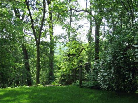 backyard view 69 edgewood road english manor home summit nj carolann