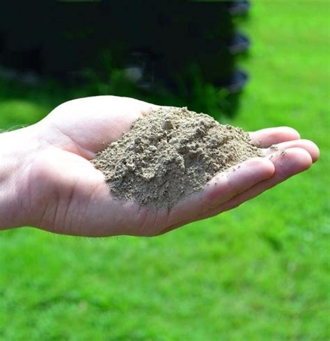 What Is Rock Dust For Gardens Top 10 Ways To Improve Your Garden Soil Naturally Without
