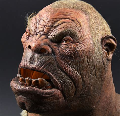 white witch ogre mask display prop store ultimate collectables