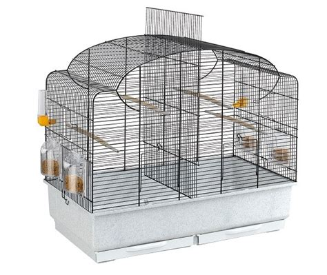 cage with divider ferplast canto bird cage with divider