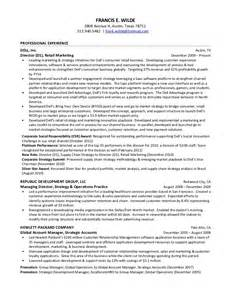 Resume Professional Summary Examples by Deloitte Resumes Template