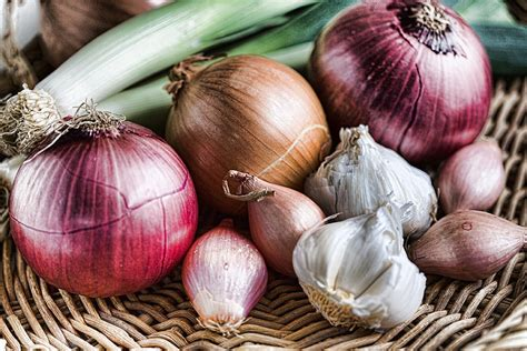powerfood profile allium family life over cancer blog