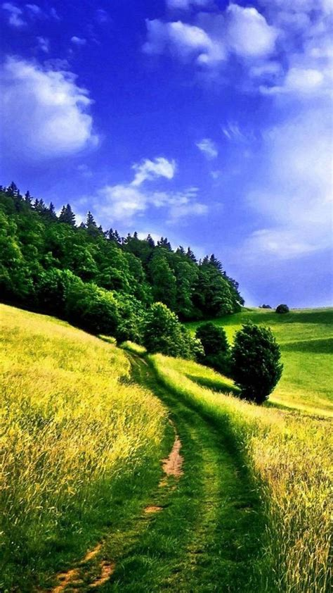 nature hd wallpapers  iphone  wallpaperspictures
