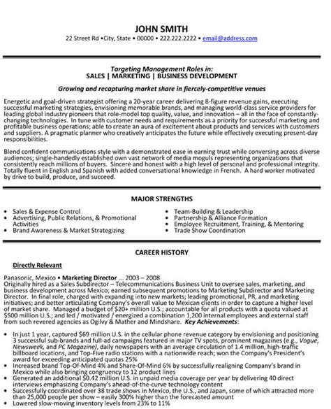Director Resume Samples – Director of IT Resume Example