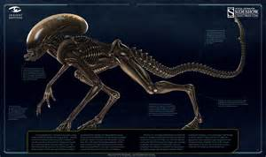 alien weyland yutani report collectors edition avpgalaxy