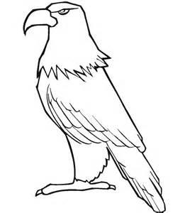 Eagle Template eagle template animal templates free premium templates