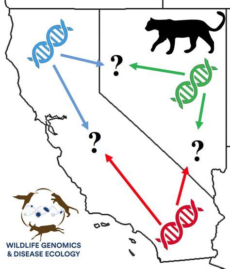 Landscape Genetics News Wildlife Genomics Disease Ecology Wildlife