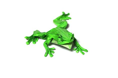 Origami Tree Frog - 262 best october 2016 origami images on