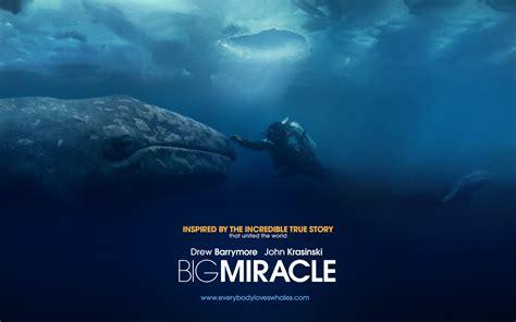 The Big Miracle Big Miracle Wallpapers Big Miracle Stock Photos