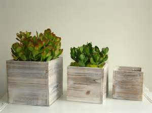 Large Wooden Flower Boxes Large White Shabby Chic Wood Box Woodland Succulent By