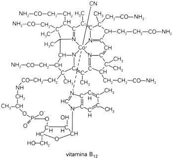 cadenas de atomos lineales caracteristicas de las biomoleculas ciencia desarrollo y