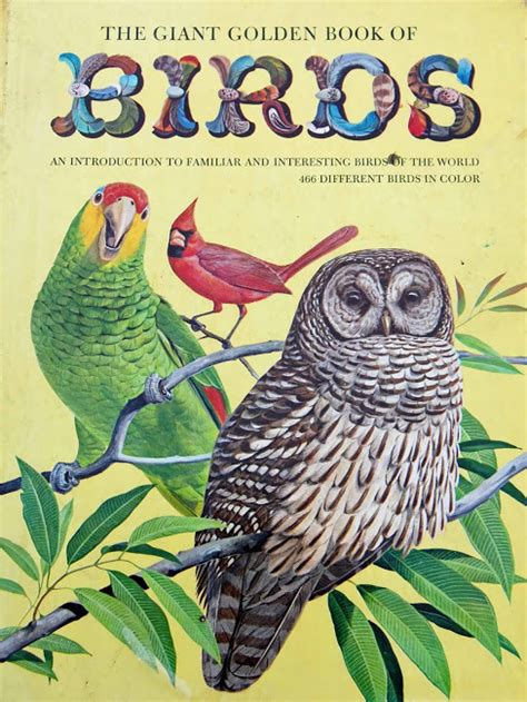 My Bird Book vintage books my kid the golden book of birds