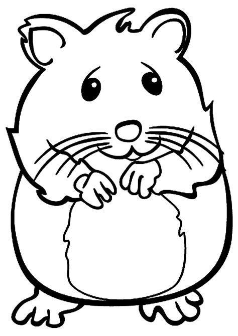 Coloring Page Hamster by Hamster Coloring Pencil And In Color Hamster