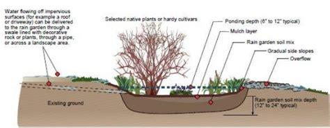 gardens chesapeake stormwater network